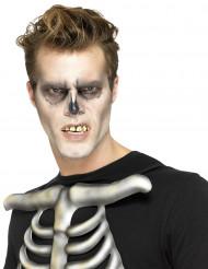 Skelett-Gebiss zum Kleben Kostümzubehör weiss