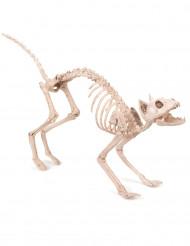 Dekoration Katze zum Aufhängen 60cm Halloween