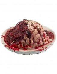 Deko Teller Gehirn für Halloween