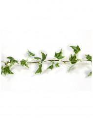 Hübsche Efeu-Girlande Deko-Artikel grün-braun 1,4 m
