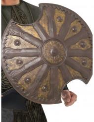 Bronzeschild 50 cm