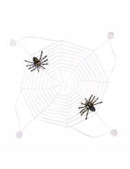 Spinnennetz phosphoreszierend 27x27cm