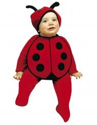 Baby Marienkäfer-Kostüm