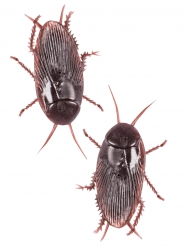 Deko-Kakerlaken aus Kunststoff braun