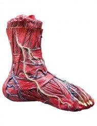 Abgetrennter-Fuß gehäutet Halloween-Deko rot-blau 25x7x23cm