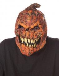 Kürbis-Maske Halloween Kostümzubehör animiert orange-braun