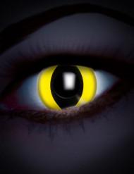 Kontaktlinsen UV ansprechendes gelbes Auge Reptil Erwachsene
