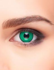 Kontaktlinsen grün und schwarz Erwachsene