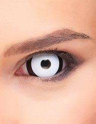 Sklera Kontaktlinsen schwarz-weiß Erwachsene