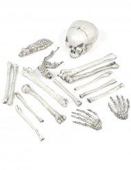 18 leuchtende Knochen Skelett-Deko Halloween
