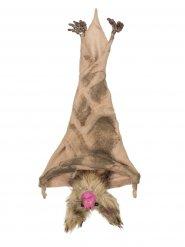 Fledermaus braun zum Aufhängen 35 cm Halloween