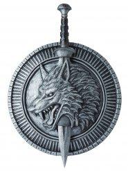 Schild mit Schwerthalter und Schwert grau
