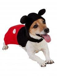 Micky Maus™ Kostüm für Hunde