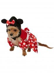Minnie Maus™ Kostüm für Hunde