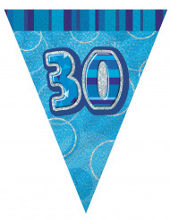 Wimpelgirlande blau 30 Jahre. 2,74m