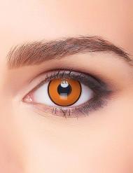 Kontaktlinsen braun-schwarz