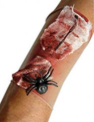 Blutende Wunde mit Spinne
