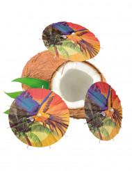 Getränke-Schirme Hawaii 6 Stück bunt 18cm