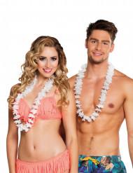 25 weiße Hawaii Ketten
