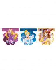 Wimpelgirlande Disney™ Prinzessinnen