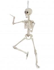 Deko gelenkiges Skelett 48cm