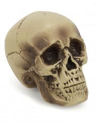 Deko Schädel aus Kunststoff