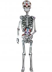 Skelett Poster dia de los muertos 152 cm bunt
