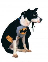 Batman™ Kostüm für Hunde