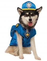 Paw Patrol™ Chase Kostüm für Hunde