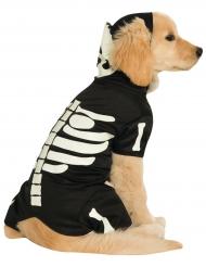 Leuchtendes Hundeskelett-Kostüm