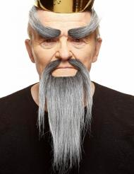 Chinesischer Bart und Augenbrauen Set für Erwachsene grau