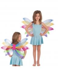 Schmetterlingsflügel bunt