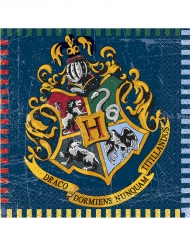 16 Servietten Harry Potter™ 33 x 33 cm