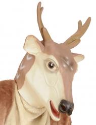 Maske Rentier für Weihnachten