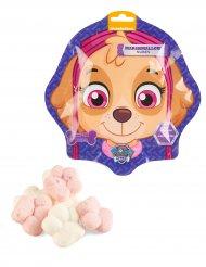Paw Patrol™ Süßigkeiten-Tasche Stella™ bunt