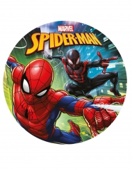 Kuchenzuckerplatte Spiderman 20 cm