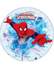 Kuchenaufleger Spiderman blau-rot 21 cm