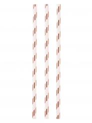 Metallische Papier-Strohhalme 12 Stück weiss-kupfer