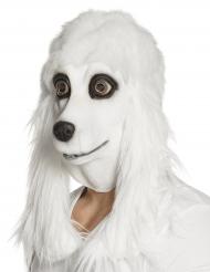 Pudel-Maske mit Schlappohren Hundemaske für Erwachsene weiss