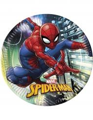 8 Spiderman Teller 23 cm