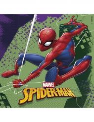 20 Spiderman-Servietten aus Papier