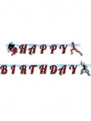 Ladybug™-Happy Birthday Girlande Kindergeburtstag bunt 15x200cm