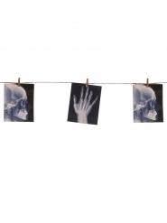Röntgenbilder Girlande Halloween 160 cm