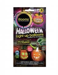 5 leuchtende Kürbis Luftballons Illooms™