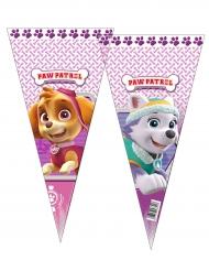 Paw Patrol™-Tüten für Süßigkeiten Skye und Everest 6 Stück 20x40cm