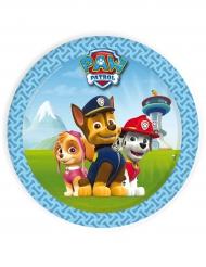 Paw Patrol™ Pappteller Kindergeburtstag klein 8 Stück bunt 18 cm