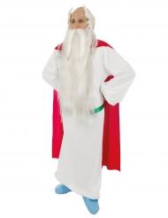 Miraculix™-Lizenzkostüm Asterix und Obelix™ für Herren bunt