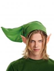 Zelda™Kostüm-Set für Erwachsene grün