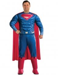 Superman™-Herrenkostüm Übergröße Lizenz blau-rot