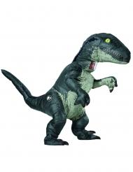 Velociraptor-Erwachsenenkostüm Jurassic World™ grau